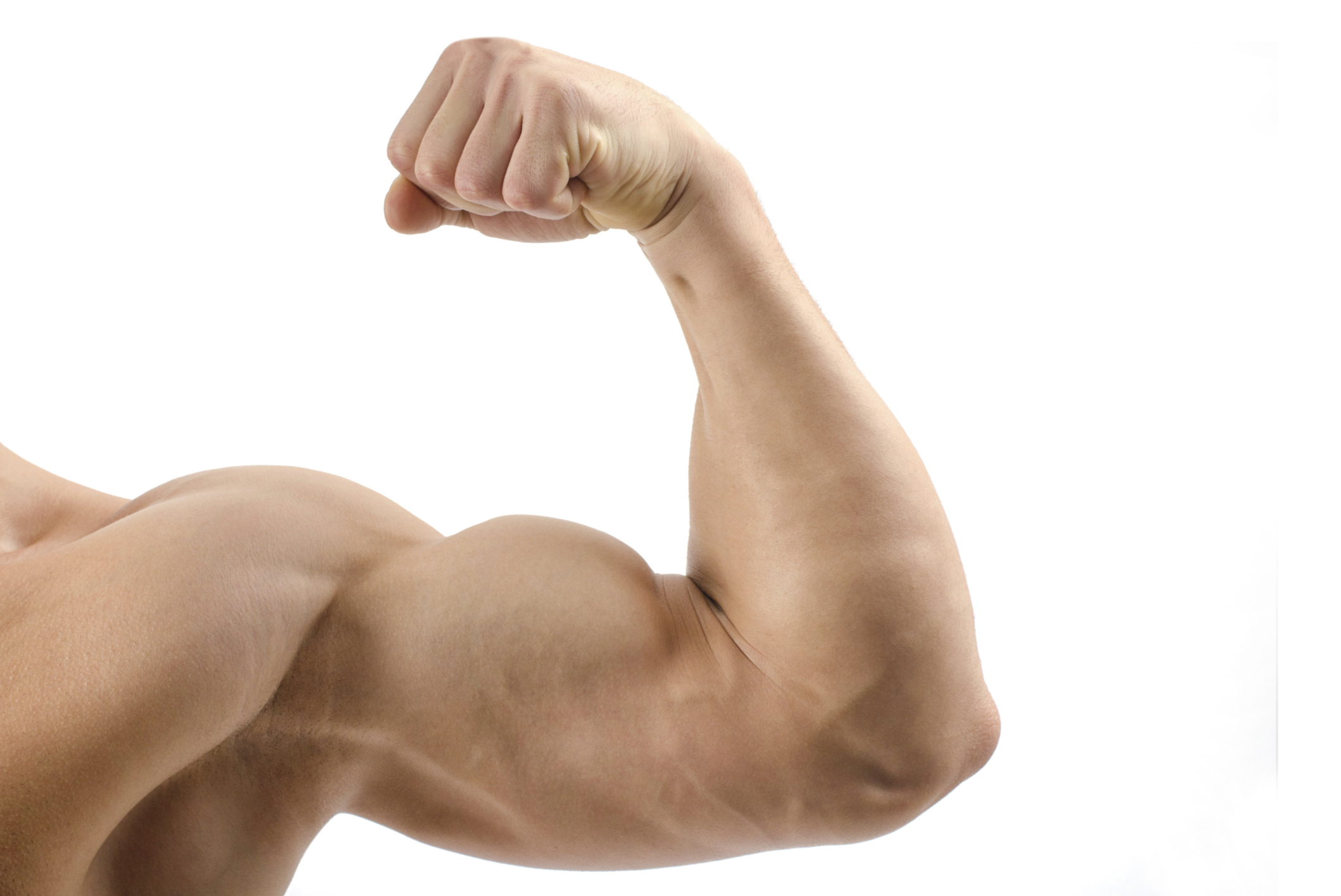 biceps sans matériel